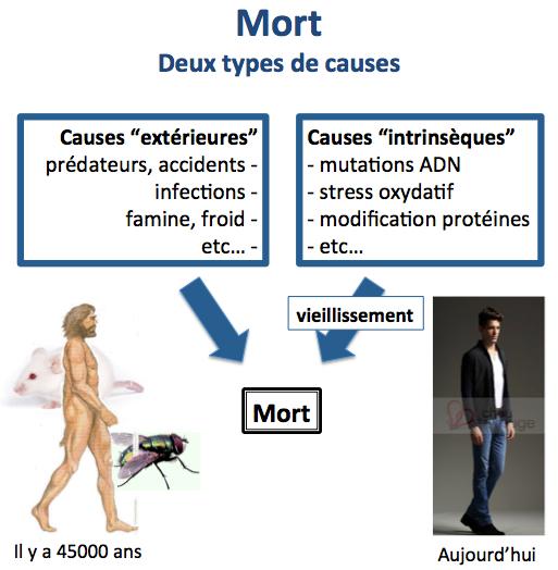 Deux causes de mort