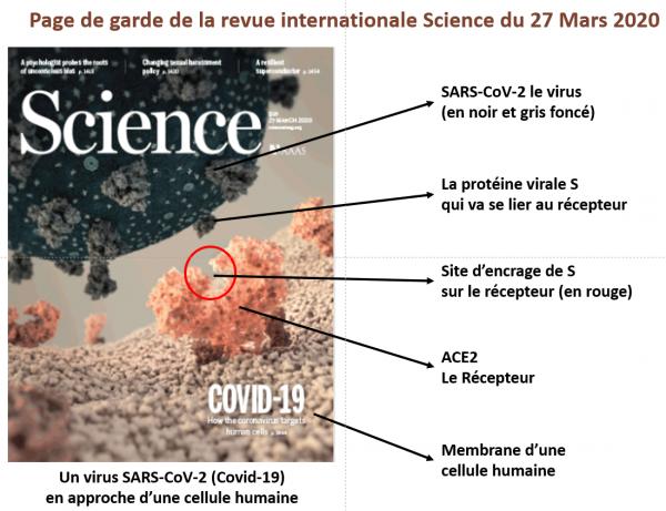 Page de garde de science 27 03 20