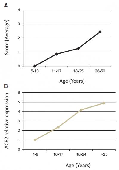 Score sensoriel versus ace2 en fonction de l age somekh 2020